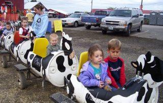 Sauvie Island Pumpkin Patch cow ride