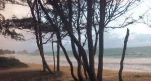 The beach on Bellows AFB