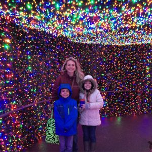 Oregon Zoo lights
