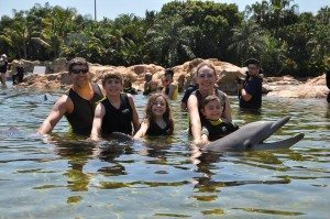 dolphins at Discovery Cove