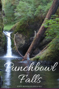 Punchbowl Falls is one of the best hikes in the scenic Columbia gorge area near Portland, Oregon. This hike is kid friendly.