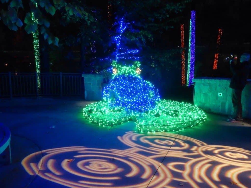 Atlanta Botanical Garden Holiday Lights