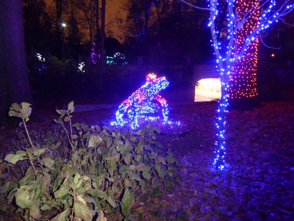 Atlanta Botanical Garden Holiday Lights - Mommy Travels