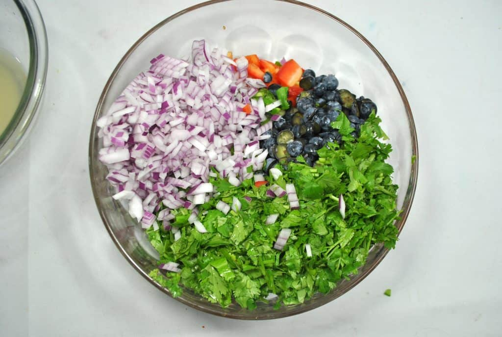 Salsa with blueberries