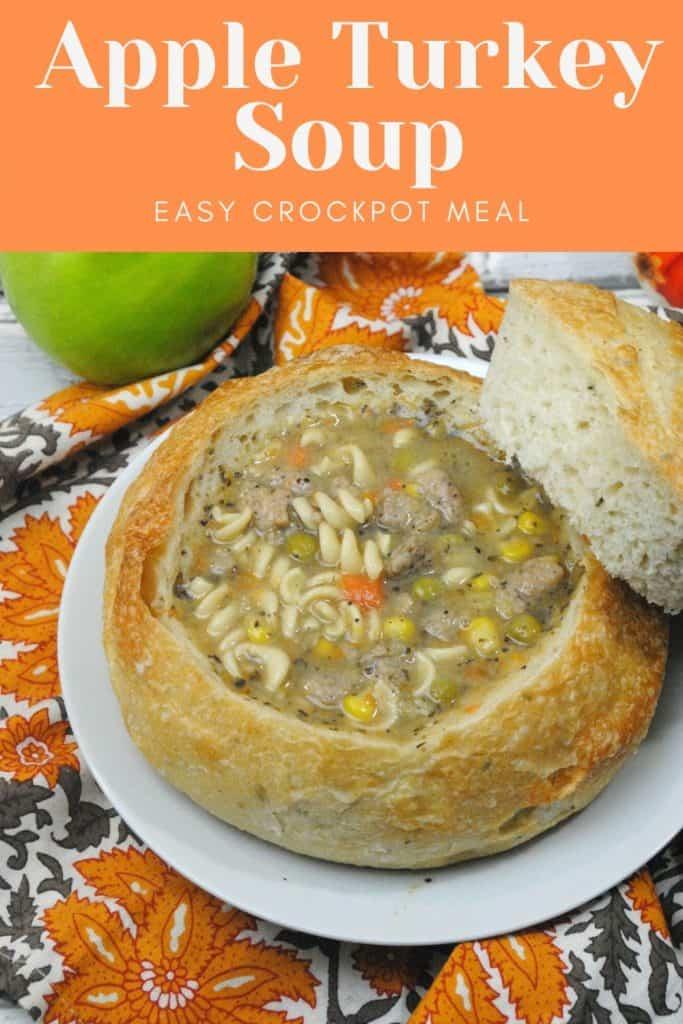 Apple Turkey Soup - Crockpot Recipe