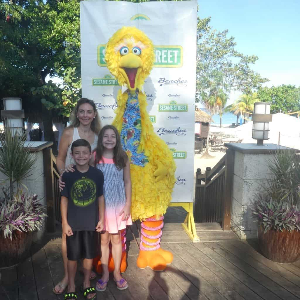 Big Bird at Beaches