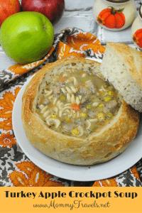Turkey apple soup crockpot recipe