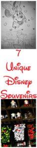 7 Unique Disney Souvenirs