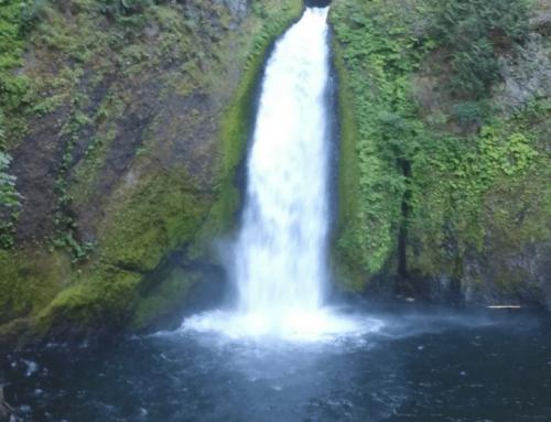 Hiking Wahclella Falls in Oregon