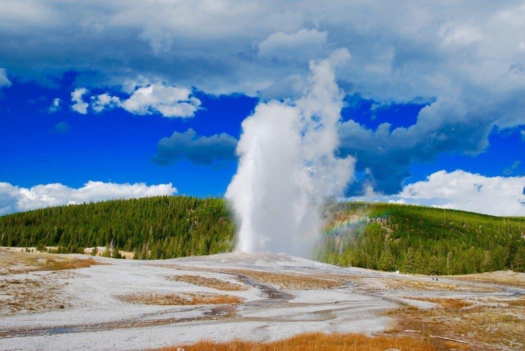 a geyser in yellowstone