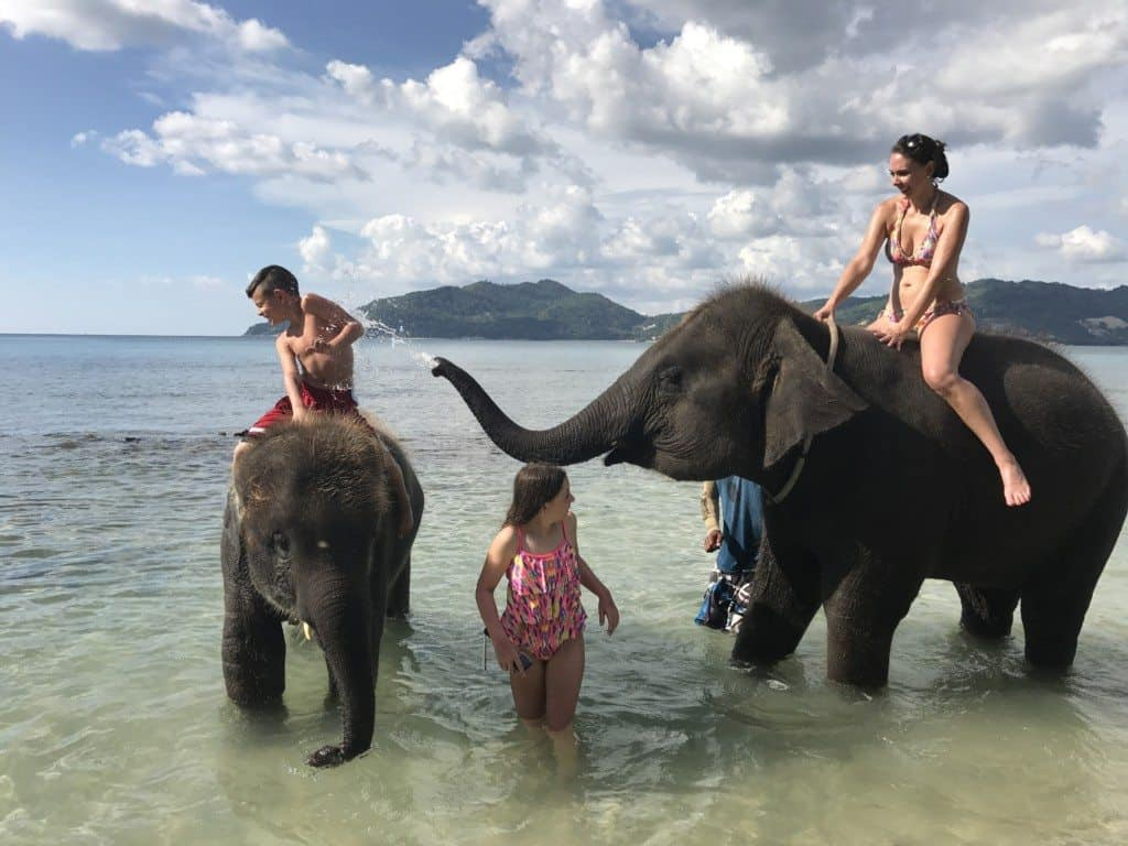 Swimming With Elephants In Phuket Thailand Mommy Travels