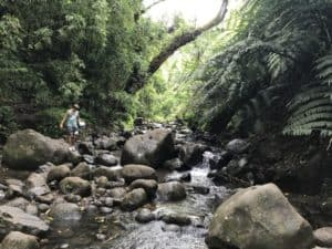 Maunawili Falls hike in Oahu, Hawaii