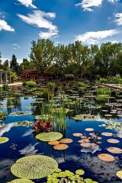 Denver Botanical Gardens