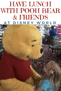 Have lunch with Winnie the Pooh and friends at Disney World