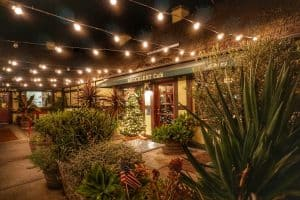 Succulents Cafe in Solvang, California