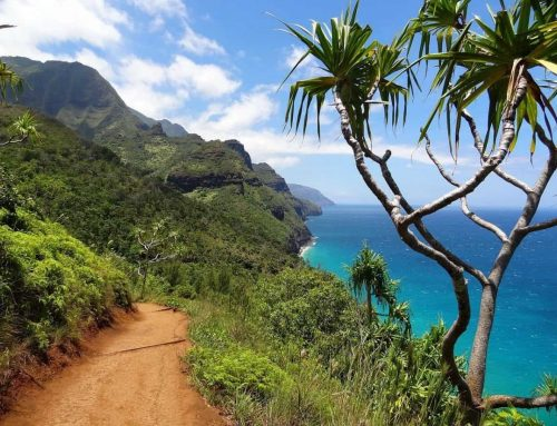 Navigating Kauai with Infants and Toddlers