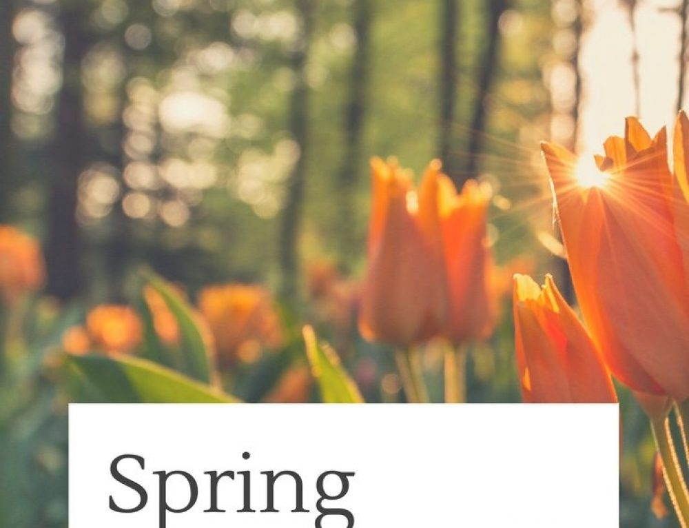Spring Inspiration: 20 Ways to Play Outside With Kids
