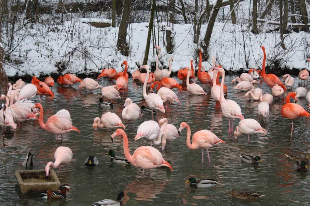 Hellabrunn Tierpark