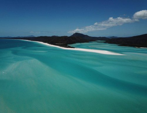 Whitehaven Beach and Snorkeling