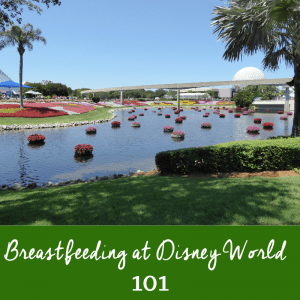 What you need to know for Breastfeeding at Disney World Successfully