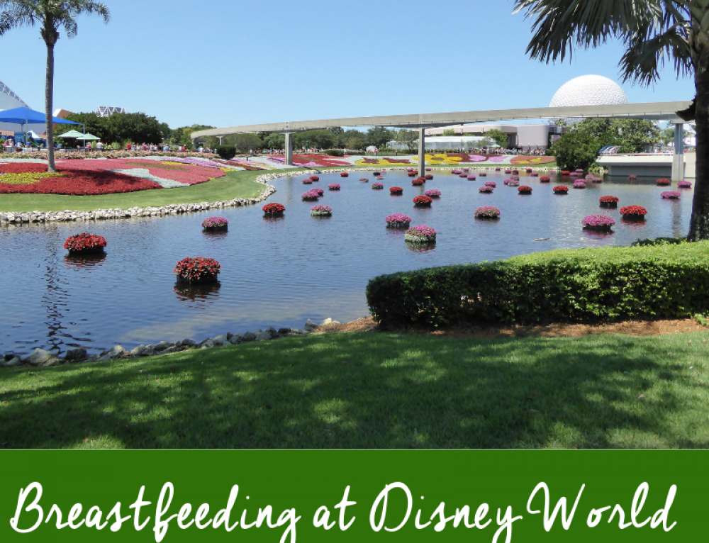 Breastfeeding At Disney World: What Every Nursing Mom Needs to Know