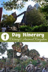 1 Day Animal Kingdom Itinerary