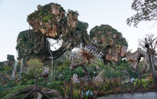 Pandora the world of Avatar at the Animal Kingdom