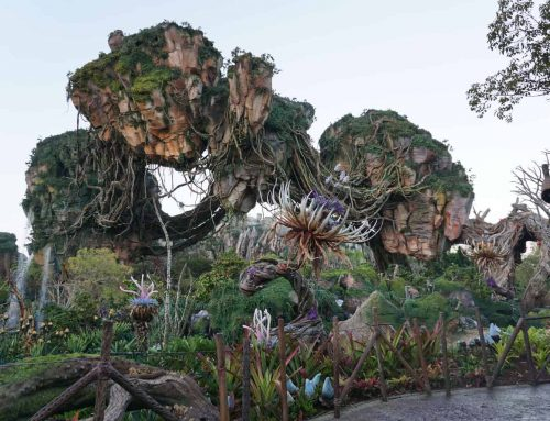 The Ultimate 1-Day Animal Kingdom Itinerary