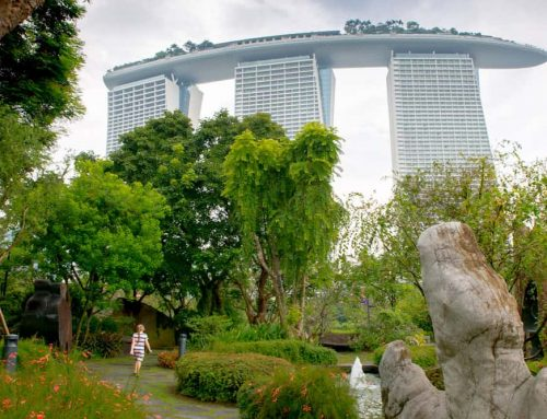 Everything You Need to See at Singapore's Stunning Gardens By the Bay