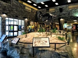 Museum of Ancient Life