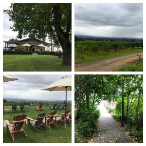 Durant Winery