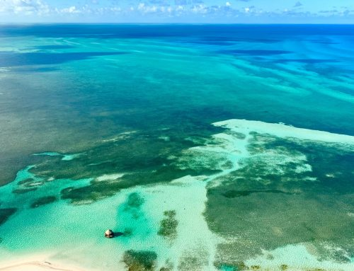 Best Natural Spots in the Bahamas