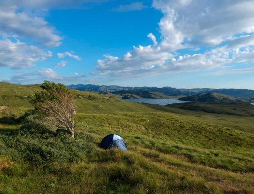 The Beginner's Family Camping Guide