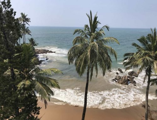 10 Day Sri Lanka Itinerary for Families