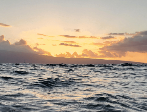 5 Family Things to Do in Maui, Hawaii
