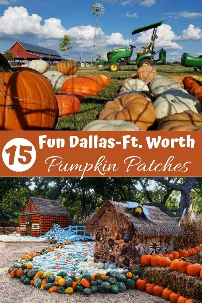 15 Fun Dallas-Ft. Worth Pumpkin Patches