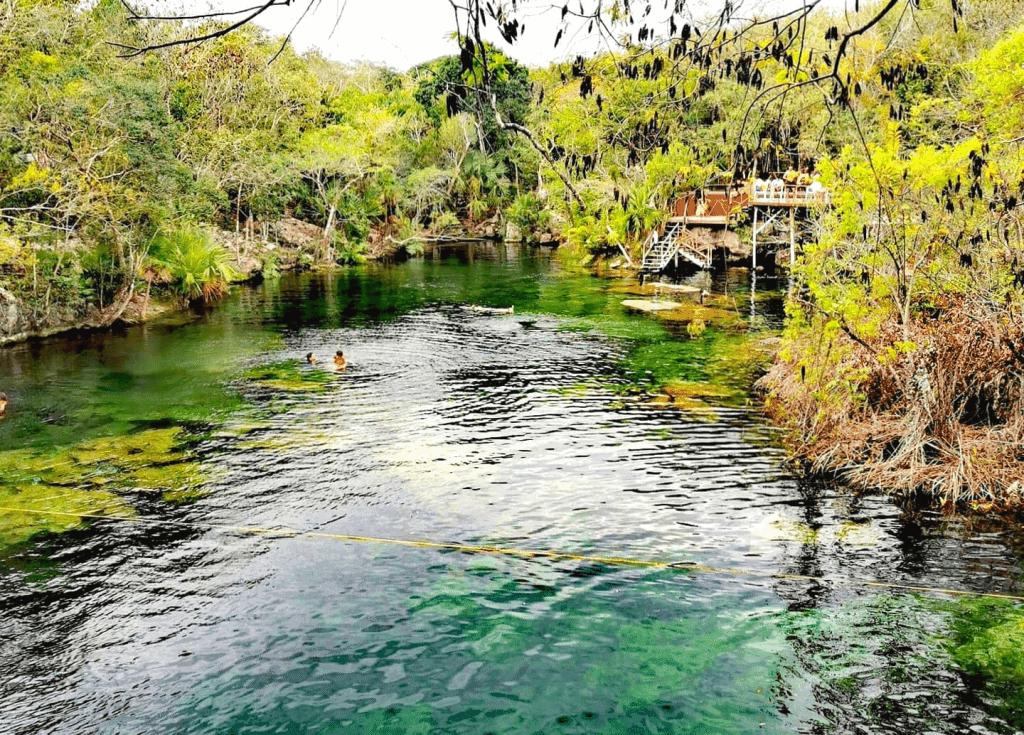 Cenote Eden