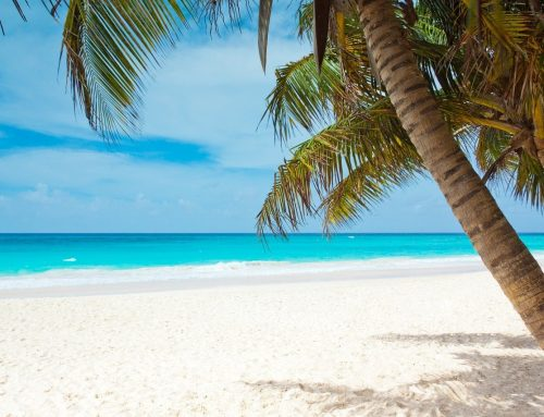 5 Best Caribbean Islands for Kids