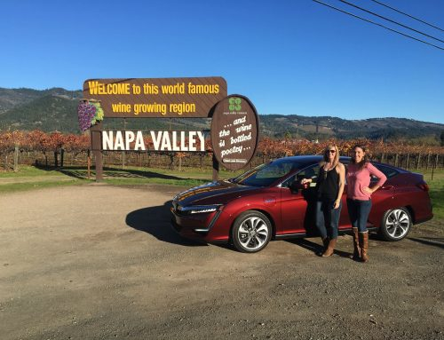 7 Best Napa Valley Wineries