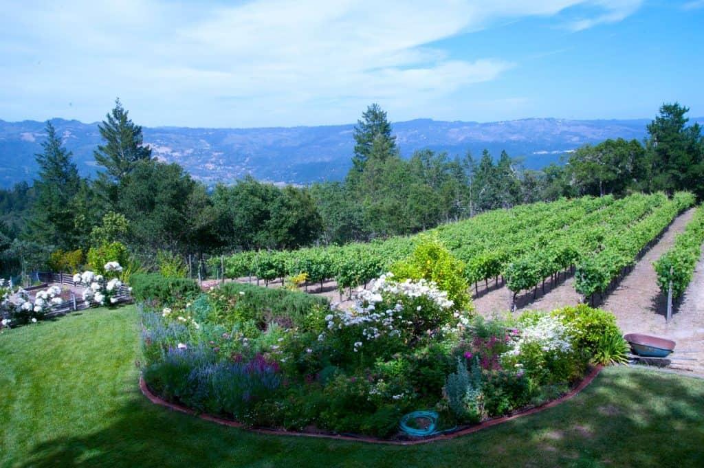 Stony Hill Winery in Napa Valley