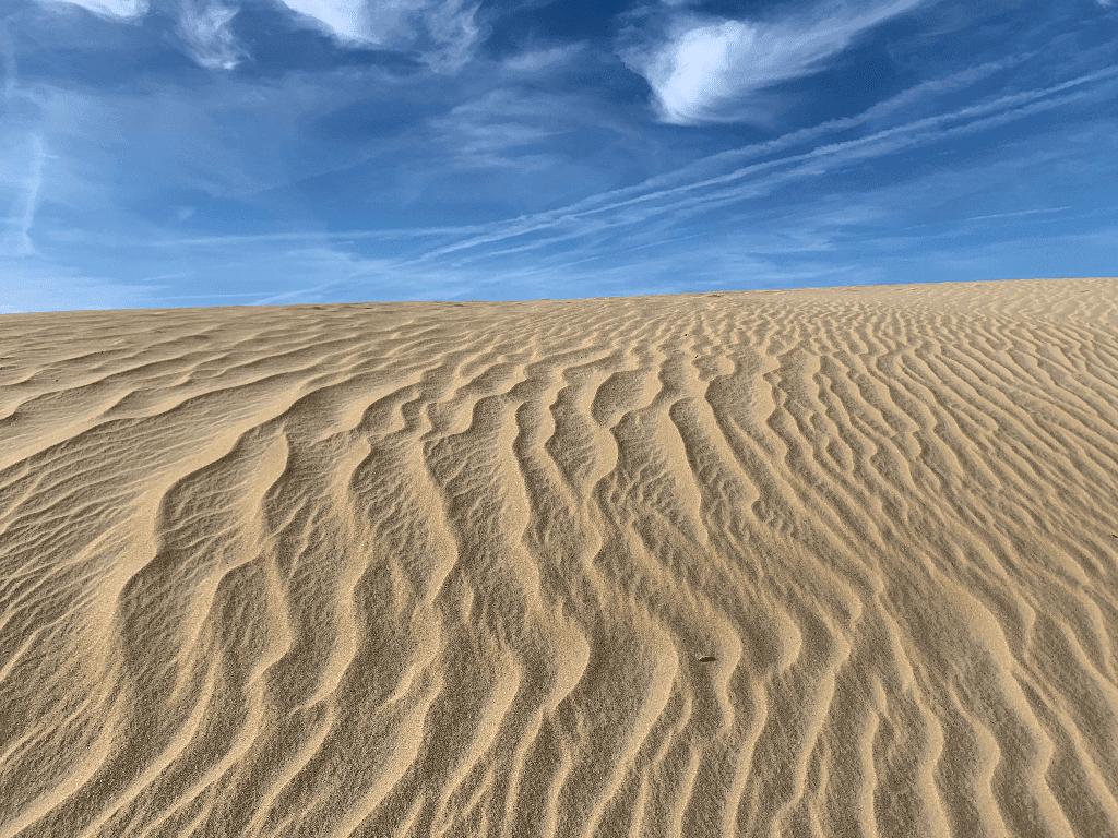 Jocky's Ridge Dunes