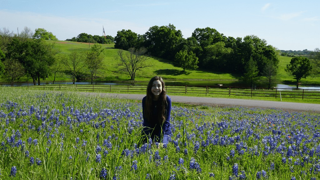 Where to Find Texas Bluebonnet